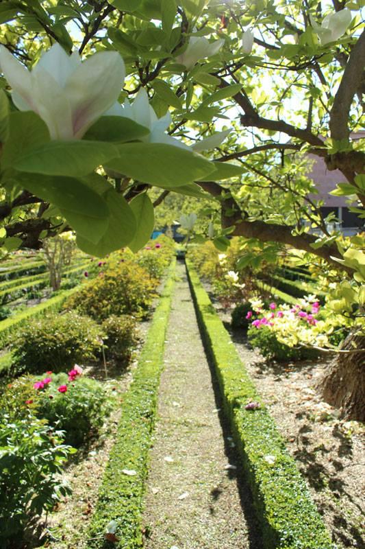 Jardin botanique royal de nancy couleur xviiie for Jardin botanique nancy