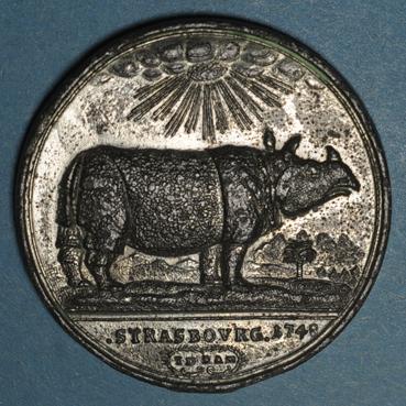 coins-alsace-alsace-strasbourg-le-rhinoceros-a-strasbourg-1748-medaille-etain-39-70mm-gravee-par-j-d-kamm_135803A